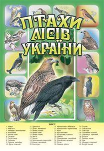 Підручники для школи Природознавство  1 клас 2 клас 3  клас 4 клас 5 клас       - Гільберг Т. Г.